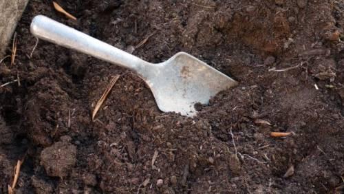 Trowel in garden soil