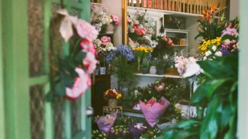 Куда поставить цветы