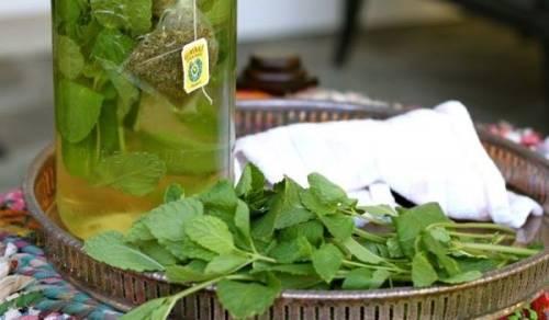 Чай из стевии, свойства и отзывы