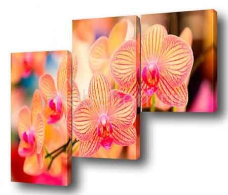Купить Brilliant Набор из 3 панно (150х100 см) Цветы BT Y-2000H