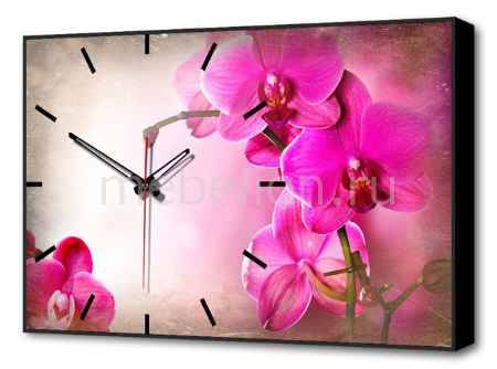 Купить Brilliant (60х37 см) Орхидеи BL-2205