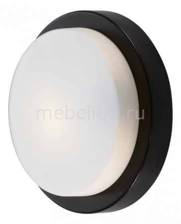 Купить Odeon Light Holger 2744/1C