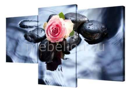 Купить Brilliant Набор из 3 панно (78х50 см)Цветы и камни BT XH-212