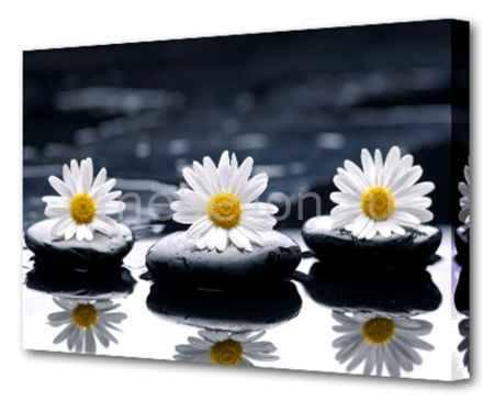 Купить Brilliant (75х50 см) Цветы и камни BT Y-1004H