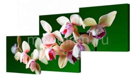 Купить Brilliant Набор из 3 панно (150х70 см) Цветы BT Y-2013H