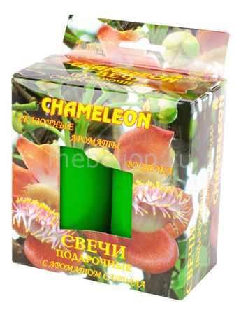Купить Гифтман Набор из 2 свечей ароматических 14376