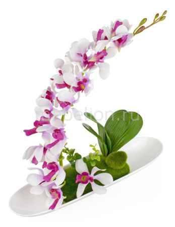 Купить Гифтман Растение в горшке (35х30 см) GFT 25839