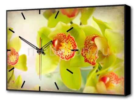 Купить Brilliant (60х37 см) Цветы BL-2200