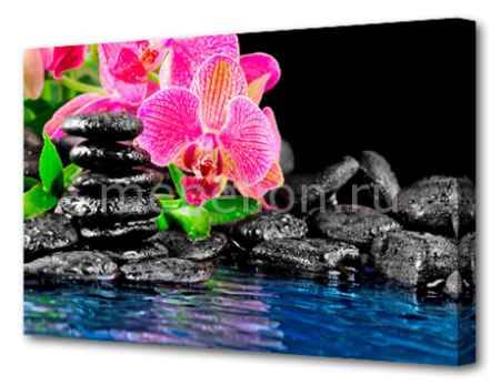 Купить Brilliant (75х50 см) Орхидея Y-1008H