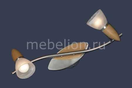 Купить Lussole Cisterino LSQ-6411-02