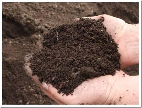 Как распространять плодородный грунт?