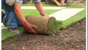 Методика выполнения укладки рулонного газона