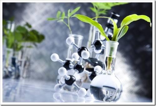 Регуляторы роста растений: применение