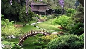 Традиции китайского сада и огорода