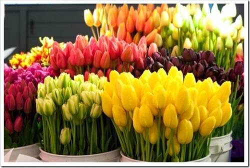 Свежие цветы – сюрприз вне конкуренции