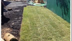 Высаживать рулонный газон не так сложно, как может показаться на первый взгляд