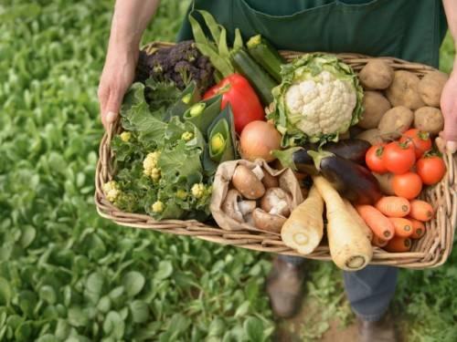 Преимущества фермерских продуктов