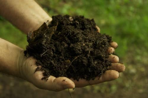 Что такое почвенная смесь