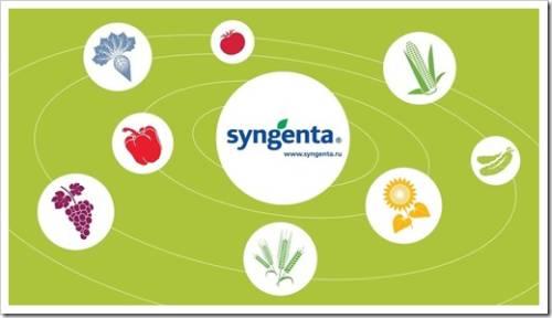 Преимущества использования агрохимикатов производства компании Syngenta
