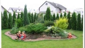Закисление почвы, соседство с плодовыми растениями
