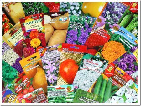 Приобретение семян в интернет-магазине