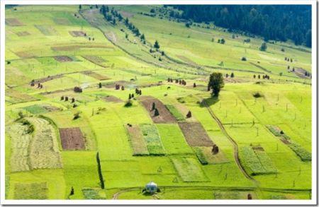 Рекомендации по выбору земельного участка